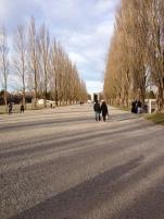 Dachau 8 with Aleister Nacht