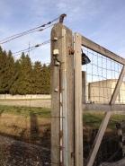 Dachau 10 with Aleister Nacht
